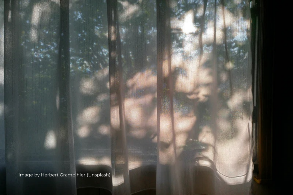 Sheer Curtain Trees Outside Window