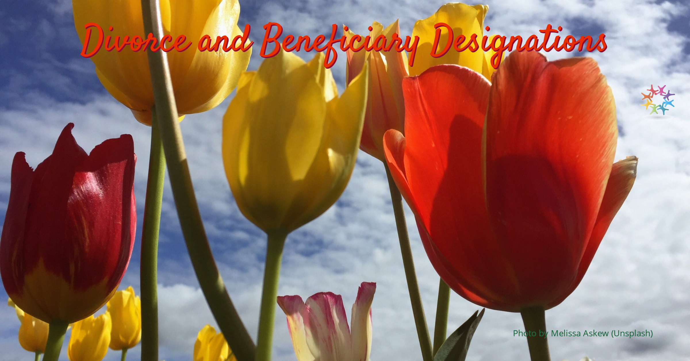 Orange Red and Yellow Tulips with Sky